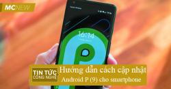 Cap-nhap-android-P-̣9