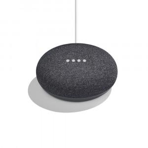 loa-google-mini-home